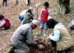 自然・環境ボランティア